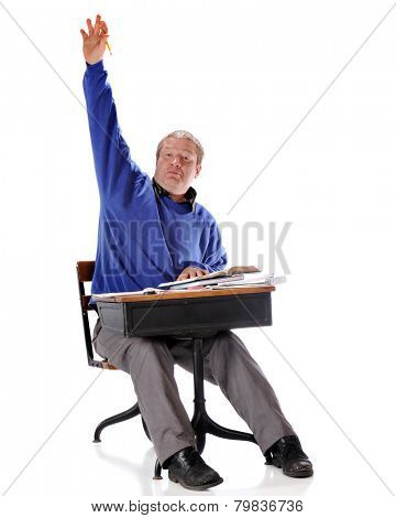 A mature student vigorously raising his hand while sitting in a retro child's school desk.  On a white background.