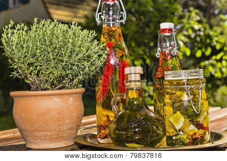 Herbs And Sheep Cheese In Oil