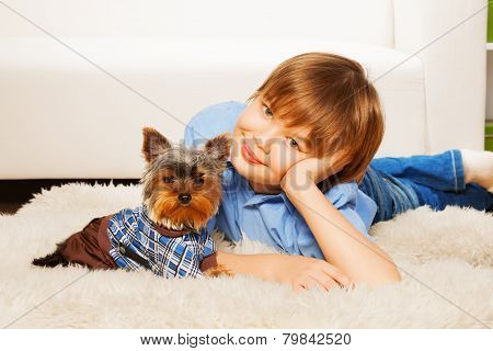Yorkshire Terrier in pullover with boy on carpet