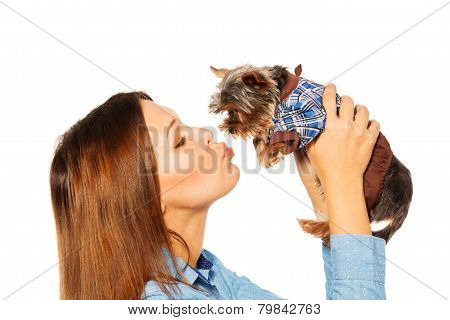 Beautiful woman kissing brown Yorkshire Terrier