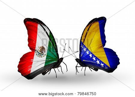 Two Butterflies With Flags On Wings As Symbol Of Relations Mexico And Bosnia And Herzegovina