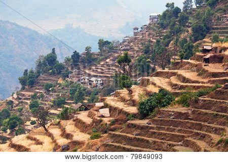 Rice Field Terraces At Central Nepal