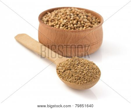 coriander spices in spoon isolated on white background