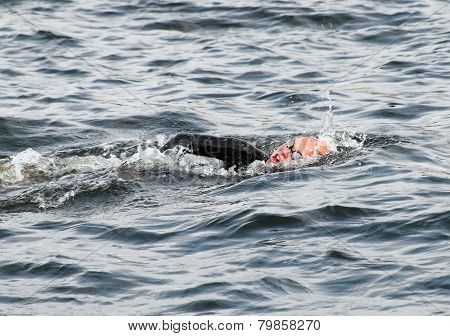 One Female Triathlete Swimming