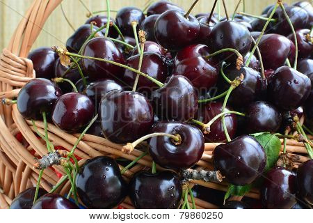 Cherries - Closeup
