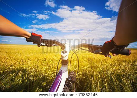 Mountain biking in the field. View from bikers eyes.