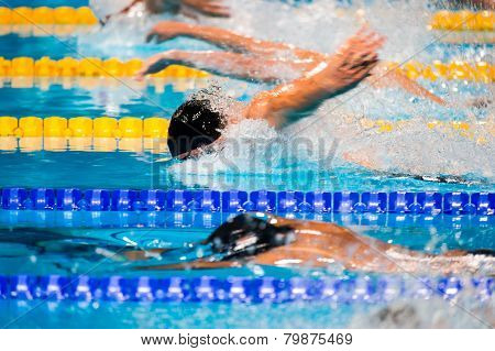 Butterfly Swimming Race