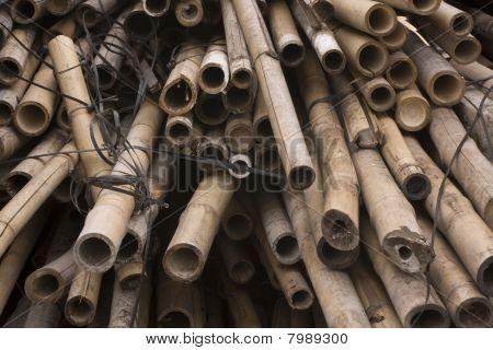 Es ist eine Menge von Bambusse für chinesische Baustelle