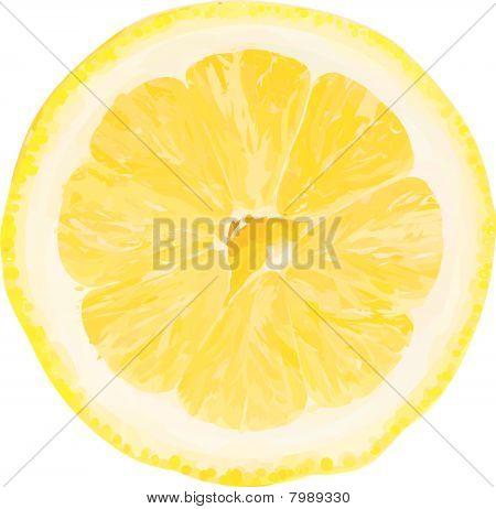 Vector lemon slice.