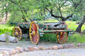 stock photo of ox wagon  - Historical four wheeled ox - JPG
