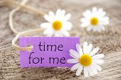 pic of three life  - Purpel Label With White Ribbon And English Life Quote Time For Me With Three White Marguerite Blossoms On Wooden Background - JPG