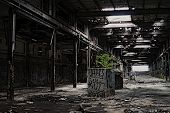 stock photo of raunchy  - Abondoned Factory - JPG