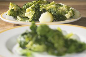 picture of turnip greens  - tasty Italian speciality  - JPG
