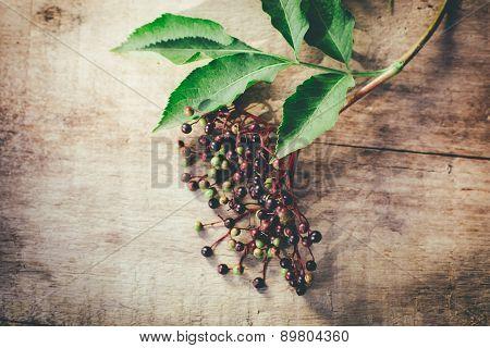 elder berry on old wooden background
