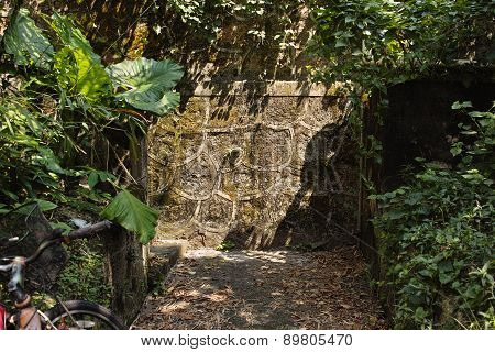 Stone wall in the jungle