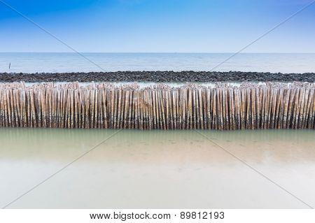 Bamboo fence protect sandbank