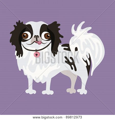 Japanese Chin. Vector illustration of a dog.