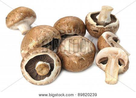 Fresh royal mushrooms champignons