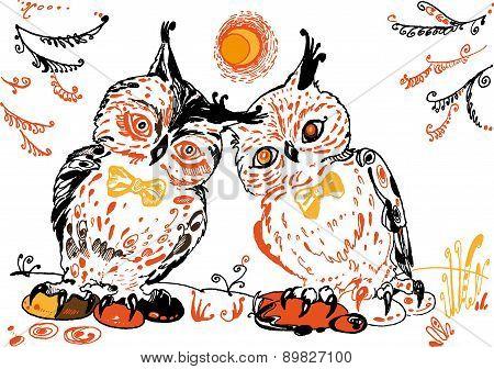 Owls pair