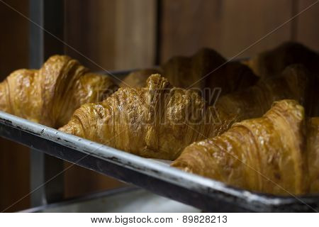 Well Baked Croissant on the Tray