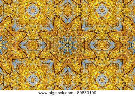 Kaleidoscopic Floral Pattern