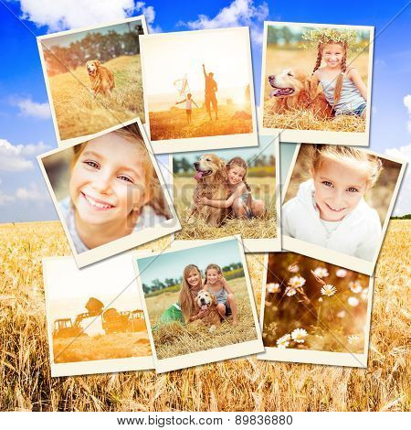 photo collage of family with a dog resting in a field and flying a kite