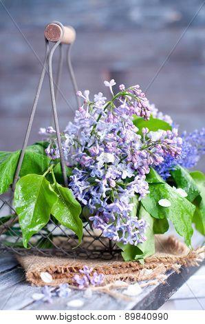 Summer Lilac Flowers In Basketon
