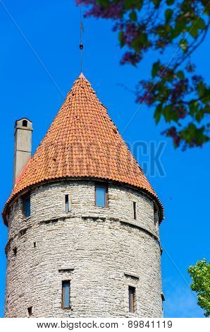Old Tower. Tallinn, Estonia