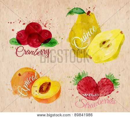 Fruit watercolor cranberry, quince, apricot, wild strawberries kraft