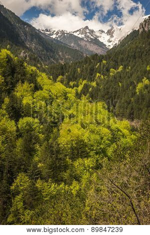 Picturesque Landscape On Mount Olympus