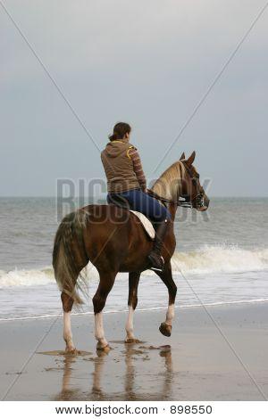 Rider At The Beach