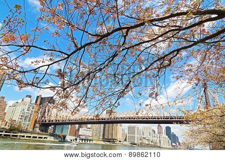 A view on Manhattan and East River in spring.