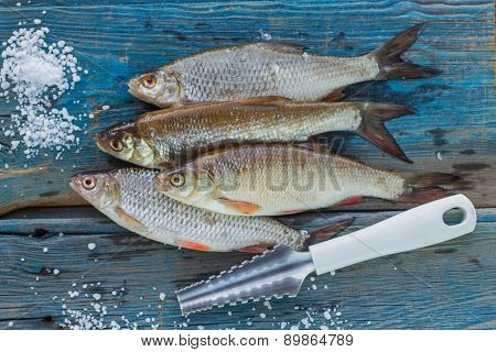 Freshly caught fish on a wooden table and a knife for cleaning of scales