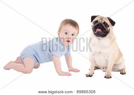 Funny Baby Boy Toddler And Pug Dog Isolated On White