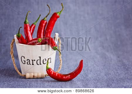Hot Red Chili Peppers In Wooden Mini Backet With Word Garden On Bluish Background , Horizontal Compo