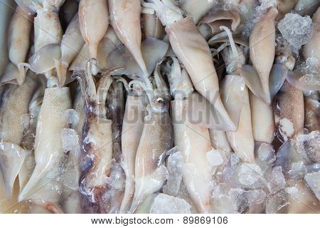 Fresh Squid Pile Up On Ice At Market ,thailand,top View