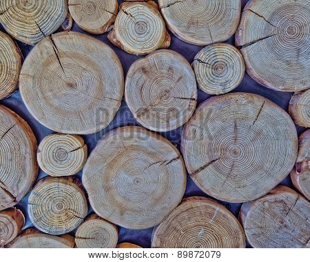 cut logs wood texture background