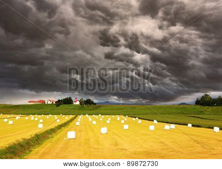 The huge cloud closed the sky. Big field with haystacks. The farm and different economic constructions is in the distance visible.