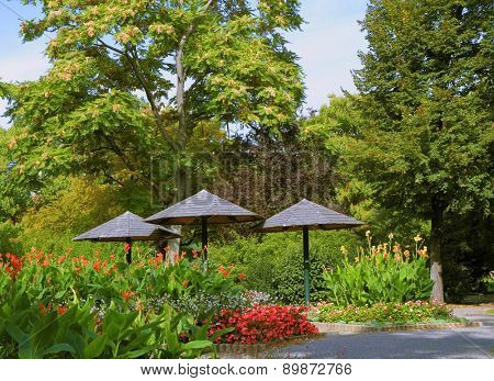 Cozy lawn in well-groomed park surrounded by flowers