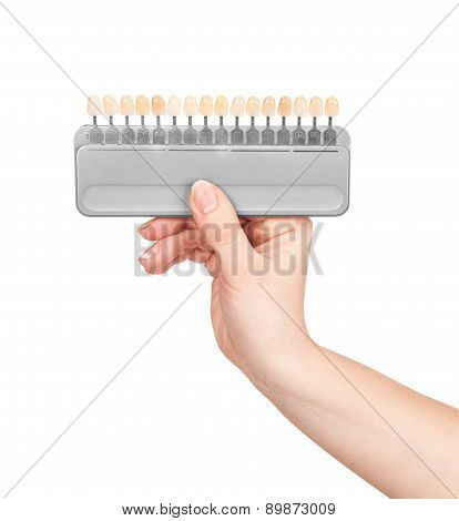 Hand Holds The Color Palette For The Teeth On An Isolated White Background