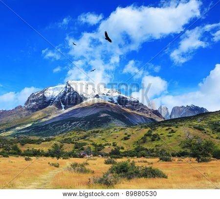 National Park Torres del Paine, Chile. Snow-capped mountains and rocks Torres del Paine. Yellowed autumn field, Patagonia