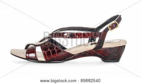 Elegant Patent Leather Sandals Isolated White Background