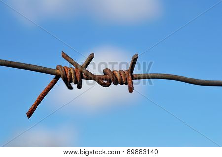 Detail Of Barbed Wire Against A Blue Sky