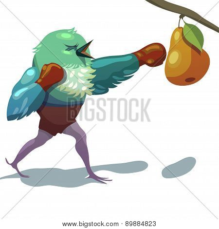 Vector Illustration Of Sparrow. Boxing.