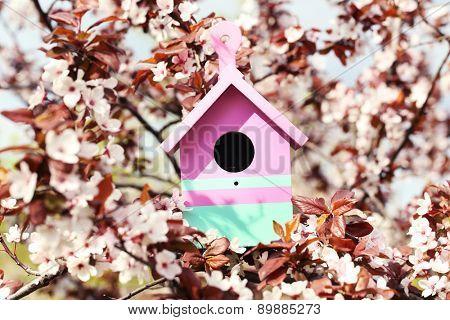 Decorative nesting box on bright background