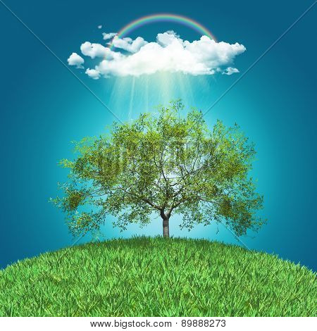 3D render of a grassy landscape with walnut tree, rainbow and rain cloud