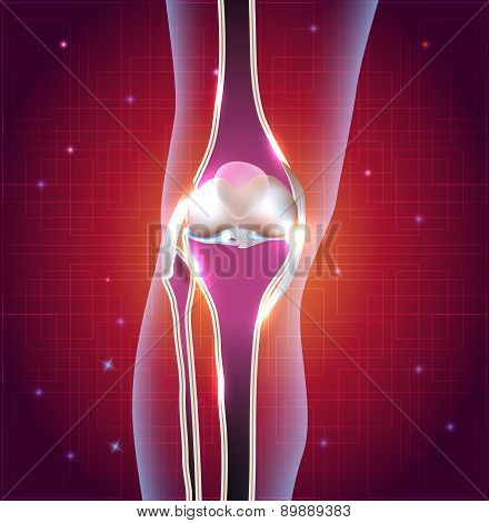 Normal Knee Joint Abstract Bright Design