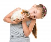 foto of porpoise  - Cute little girl holding a guinea pig - JPG