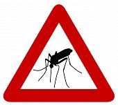 picture of gnats  - Red warning sign with black silhouette of mosquito - JPG