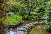 picture of masterpiece  -  Decorative private garden on Vancouver Island in Canada  - JPG